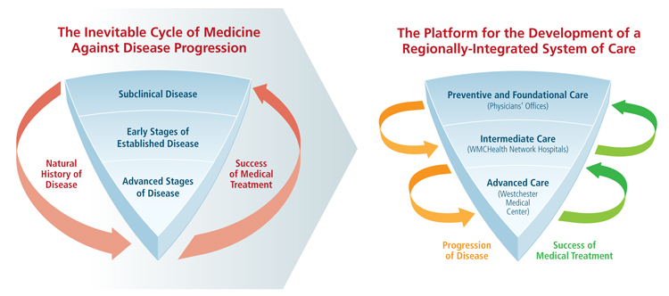 medicine and disease cyclical diagrams